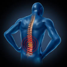 Chiropractic Care NY
